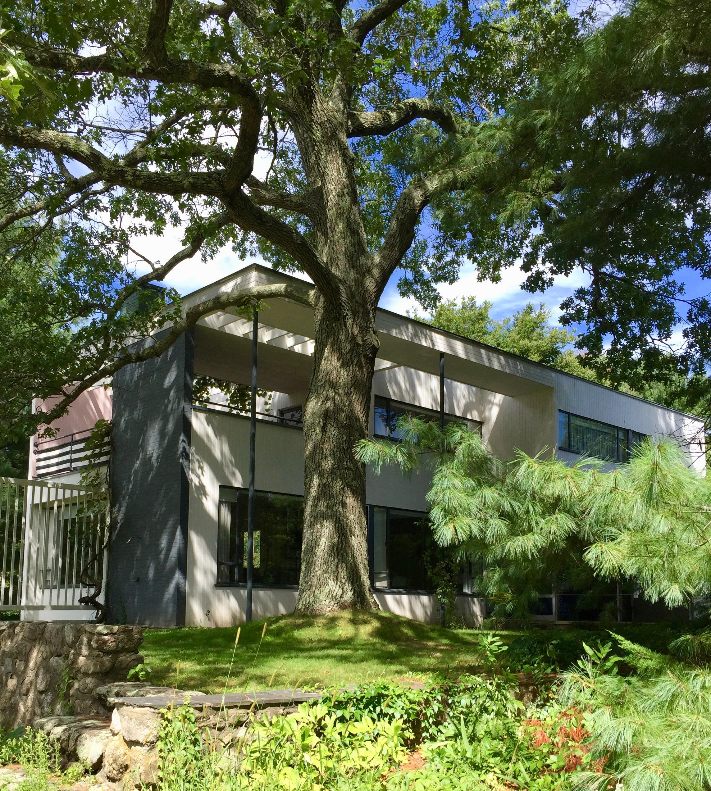 Gropius House an interior designer tours the gropius house lincoln massachusetts